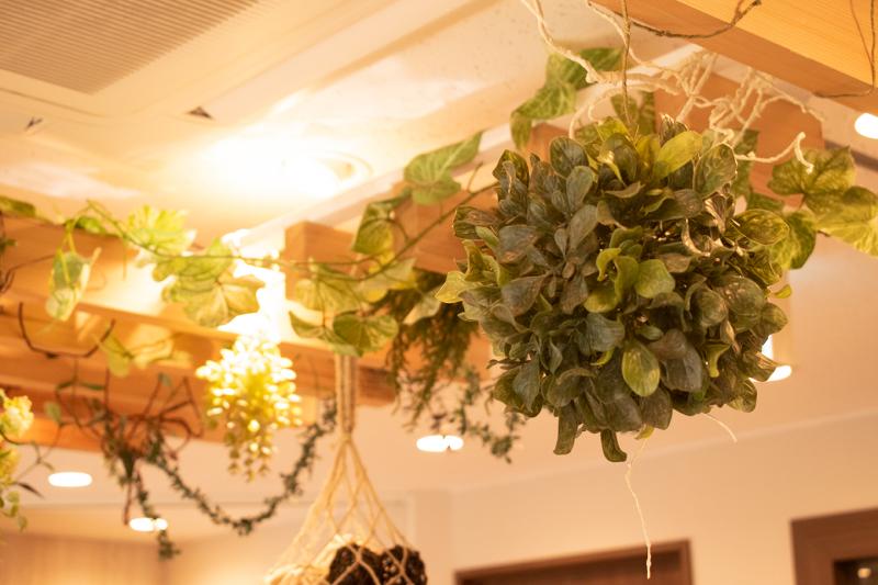 天井にはたくさんの植物が飾ってある